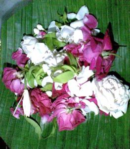 bunga kembang tujuh rupa